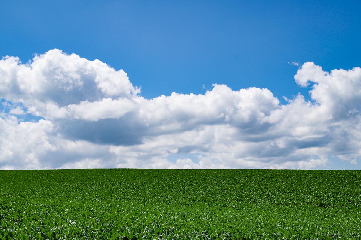 美瑛の丘と空