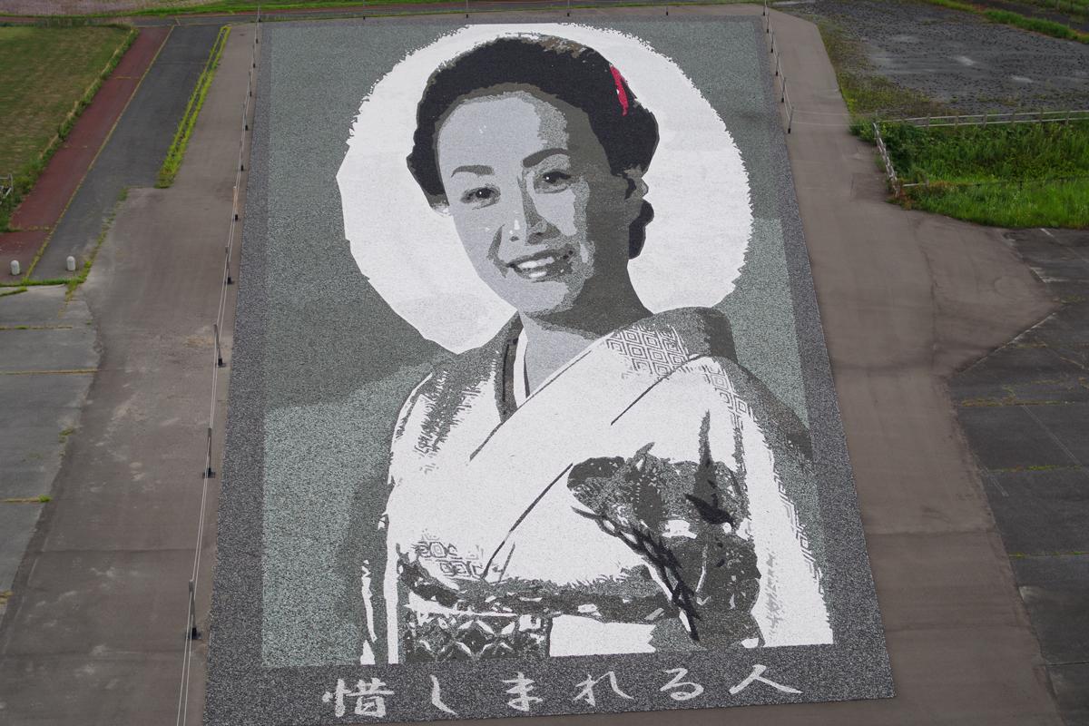 田舎館村の石アート:美空ひばり
