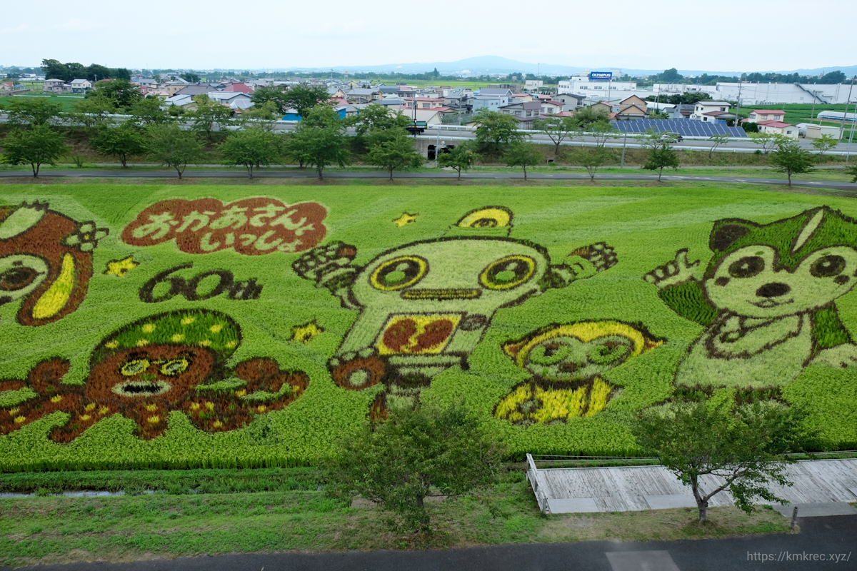 田舎館村の田んぼアート2019